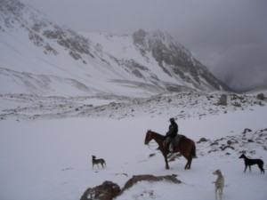 Attempting the Andes on horseback - in the snow!
